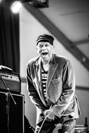 Roy Ayers performs at the 2018 Richmond Jazz Festival. Image By:by Cathy R. Foreman